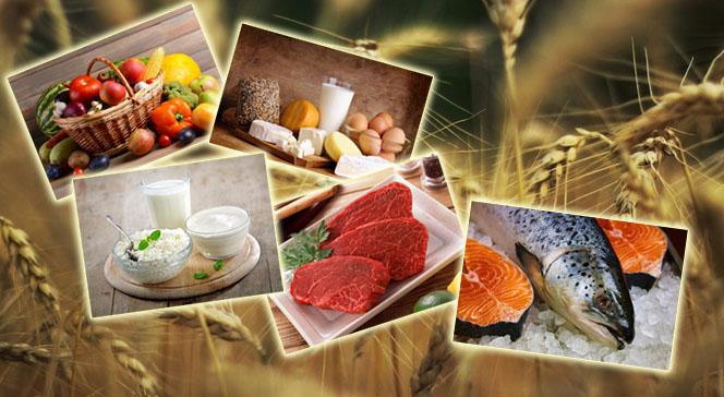 Основы питания в бодибилдинге