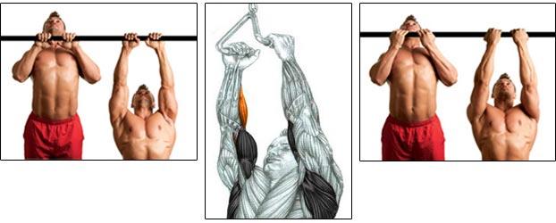 3 вида хвата при узком подтягивании