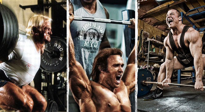 Упражнения на силу мышц программа