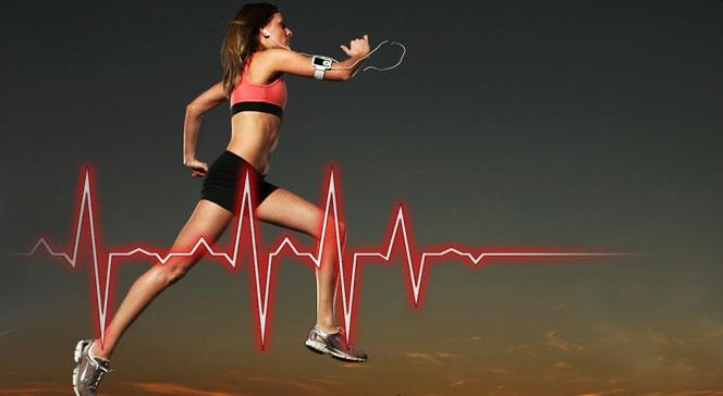 Правильный пульс при кардиотренировке для сжигания жира