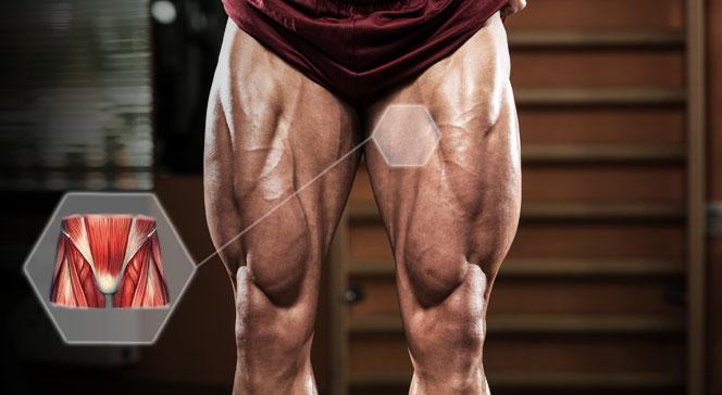 Упражнения для паховых мышц для мужчин