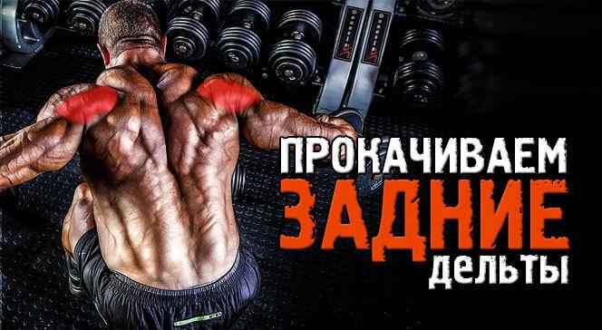 Лучшие упражнения на заднюю дельту плеча