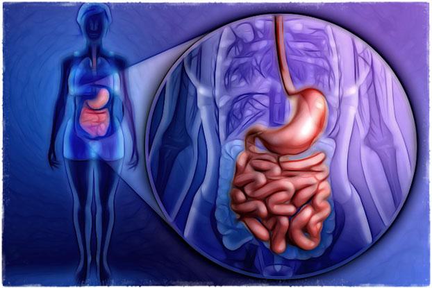 Проблемы пищеварения