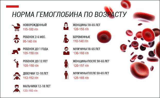 Норма гемоглобина по возрасту