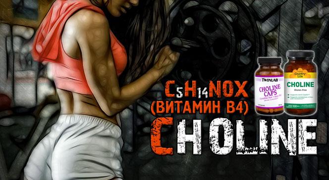 Витамин B4 холин