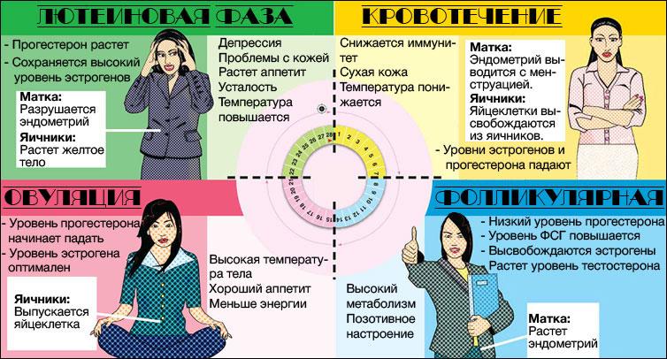 Менструальный цикл и тренировки