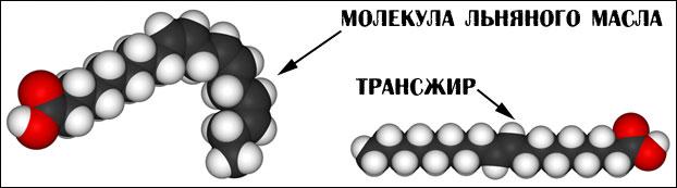 Прямая и изогнутая молекула жира