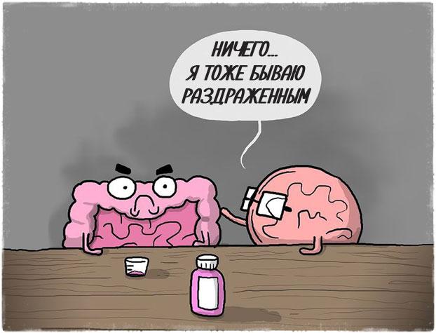 Мозг и кишечник