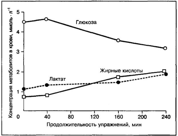 Гликоген в пище