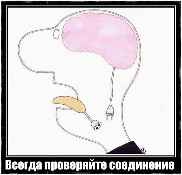 Связь мозга и языка